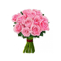 12 pink roses: Send Gifts to Mississauga