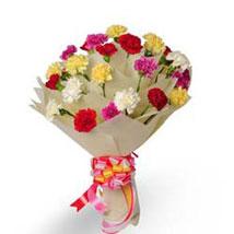 Bright Fervor EXDFNP33: Send Gifts for Pongal