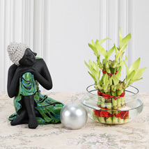 Budhha with Lucky Bamboo: Good Luck Plants for Teachers Day