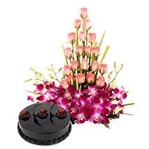 Colour N Cake