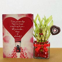 Lucky Love: Send Lucky Bamboo to Ghaziabad