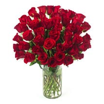 50 Long Stem Red Roses: Send Love & Romance Flowers to USA